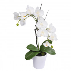 ORCHIDEE 17*H54CM BLANCHE