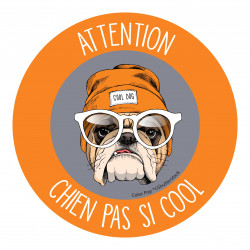 ATTENTION CHIEN PAS SI COOL