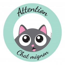 ATTENTION CHAT MIGNON
