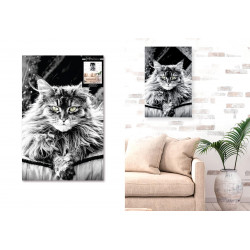 TOILE CHAT 40X60CMS